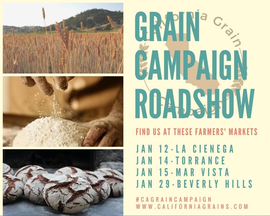 grain campaign_jan